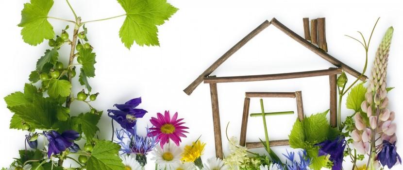 Christiane Waschkies Immobilien - Marktbericht