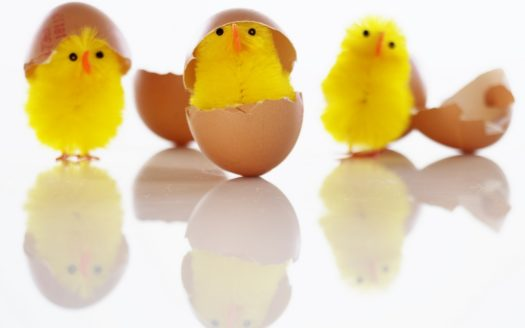 Immobilien Waschkies Frohe Ostern